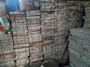 大量求购二手钢管扣件顶托及废旧合子板,另外租赁,回收各种新旧建筑材料。