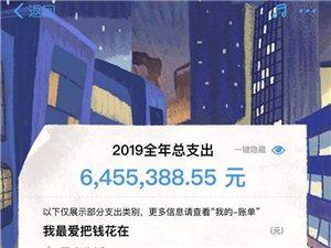 2019年支付���~�纬�砹�,你花了多少?