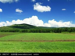 《我可爱的土地》文/刘根屯
