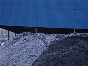 �P于�w�R梁煤�V往煤棚外大量存煤