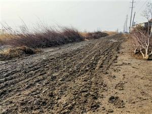湾头村湖新干渠北的路压坏了,希望相关部门负责把路修一下!