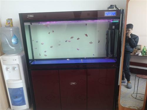 上過濾魚缸,一米二暑假買的很新