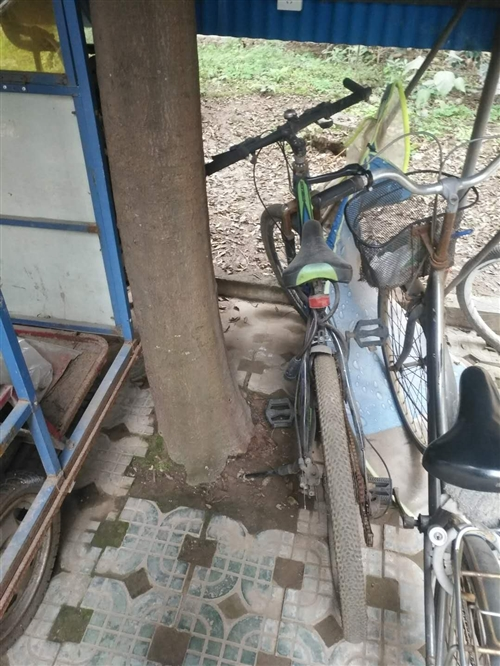 旧自行车一直放在车棚用不着了便宜卖掉城区自提