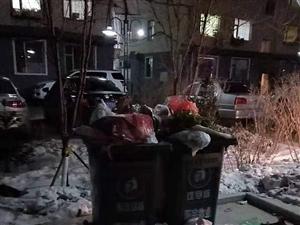 我们小区垃圾满地,这怎么做好文明城市!!