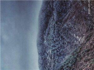 青���X的雪