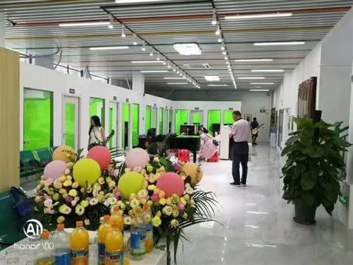 江门贝多芬文化发展有限公司