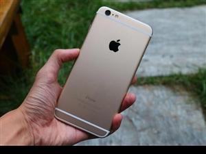 苹果6。16G.金色 外观95新。国行全原装。自己用的准备换了