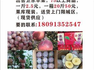 賣韓城衛東蘋果
