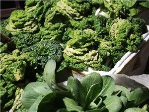 新�r蔬菜送�