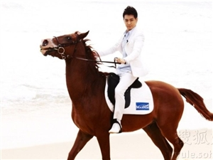 有2匹马出售,拉货,接活,接亲,干农活,专业培训过,温顺,脾气性格好,上手很好用,由于没时间管理,找...