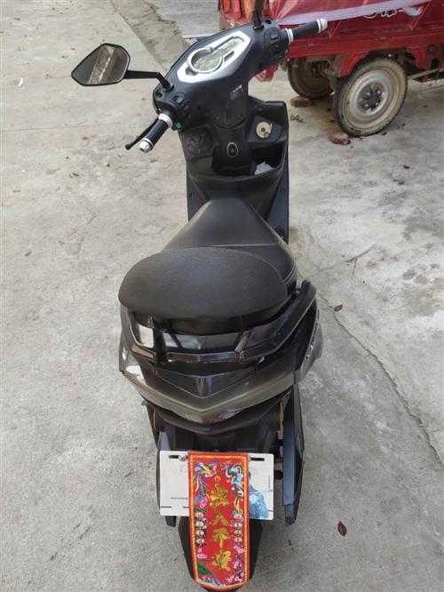本人立马电动车没人骑想买掉1000块电池不耐需要的老板请联系15103632015 儋州那大交易