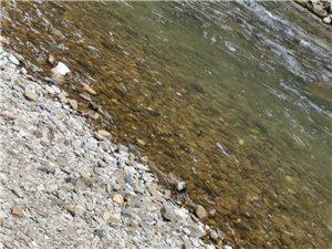 无辜的河流!!!!