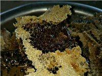 野生蜂蜜出售喜欢的微我