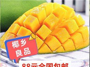 海南水果批发金煌芒果10斤88元包邮