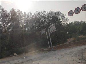 杨村圩镇到高速路口