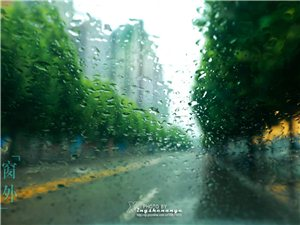 《三月的雨》文/宽容