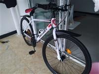 自行车 26寸     21速