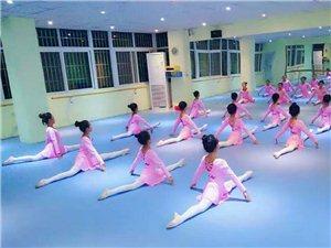 開封杞縣蘭考專業自流平找平舞蹈地膠卡通地板鋪裝