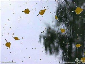 《听雨》文/宽容