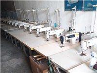 服裝廠閑置機器,縫紉,整燙,裁剪等類型