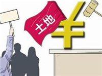 宝丰县国有土地使用权出让招拍成交公示 2019-010号