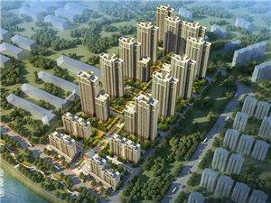 新安现代・森林国际城