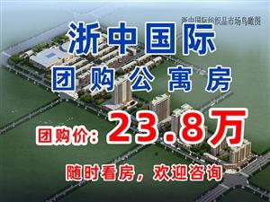 浙中国际(23.8万/套,3套公寓特价房)