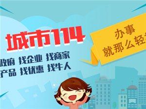中国共产党武冈市委员会形象图