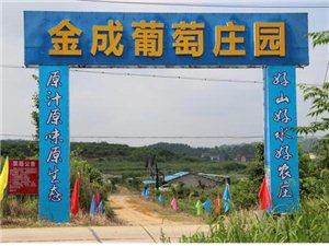 湖南六岭金成生态农庄有限公司