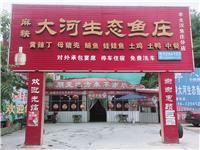盐亭麻秧大河生态鱼庄