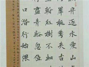 何紫宇书法
