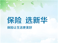 新华人寿保险有限公司