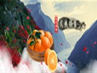 奉节草堂脐橙