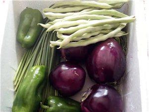 凌源市內蔬菜配送(四海商會)形象圖