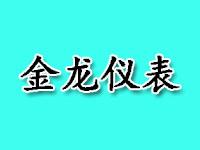 上海金龍精密儀表