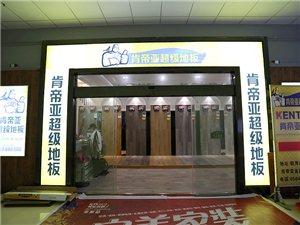 肯帝亞地板金寨專賣店