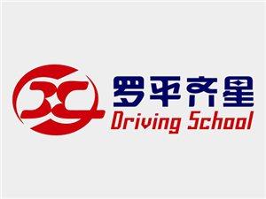 罗平县齐星汽车驾驶员培训有限公司