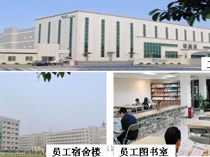 在上海的清水人现面向清水招收工人若干名