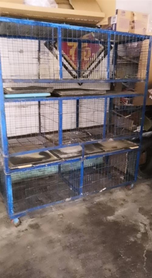 青州市自己焊的宠物狗笼,限自提。有意者私聊!