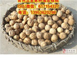 青州五里家种薄皮核桃,买卖鲜核桃,青州市里送货